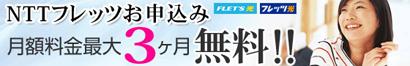 NTT�掟���T�[�r�X